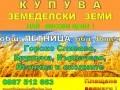 Обява КУПУВА в общ.ЛЕТНИЦА, обл.Ловеч - НАЙ-ВИСОКИ ЦЕНИ !!!!!