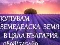 Обява Купувам земеделска земя в област Пловдив