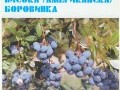 Обява Продавам Боровинка(висока, американска), арония