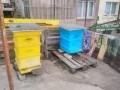 Обява 2 кошера многокорпусни с пчели