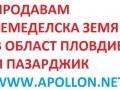 Обява Продавам земеделска земя в област Пловдив-Пазарджик