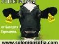Обява Продавам ушни марки за говеда и овце