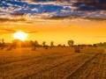Обява Купуваме земеделска земя-ниви