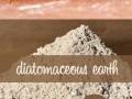 Обява Диатомит/диатомична пръст/срещу хлебарки, мравки, бълхи.