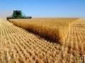 Обява Купуваме земеделска земя