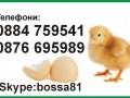 Обява Директно от производителя - инкубатори за 80 яйца 150лв.