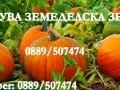 Обява Купува земеделска земя в общ. Бургас