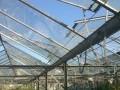 Обява стъклени оранжерии