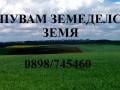 Обява Купувам земеделска земя в община Цар Калоян