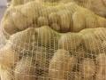 Обява Продавам картофи на едро