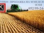 Обява Продавам земеделска земя в с.Пролез