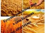 Обява Купувам земеделска земя в област Стара Загора