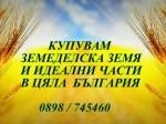 Обява Купувам земеделска земя в община Никопол