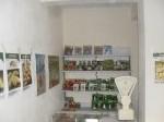 Обява Продавам Зеленчукови семена