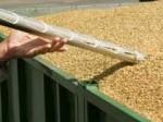 Обява Изработка на пробовземни  сонди за зърно