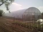Обява Изработка на професионални и градински поликарбонатни оранжерии