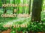 Обява КУПУВА  ГОРИ  в област ЛОВЕЧ
