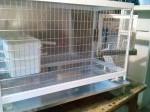 Обява Продавам алуминиеви клетки за кучета