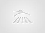 Обява Купува земеделска земя Конкурентни цени област Ямбол