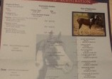Обява Продавам кобила American Paint Hors