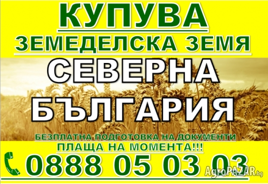 ЛЕТНИЦА, ГОСКО СЛИВОВ, КРУШУНА КУПУВА ЗЕМЕДЕЛСКА ЗЕМЯ