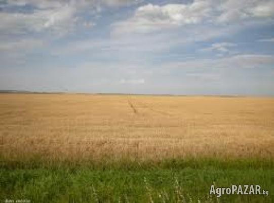 Купувам земеделска земя в селата