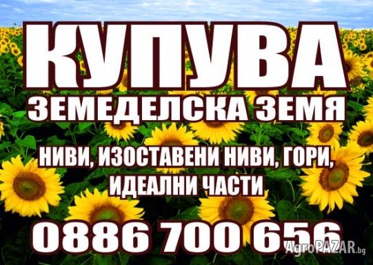 ПАВЛИКЕНИ, СУХИНДОЛ, П.ТРЪМБЕШ-Купувам Зем.Земя!!!