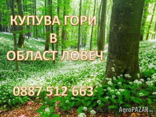 КУПУВА  ГОРИ  в област ЛОВЕЧ